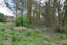 Traditional woodland