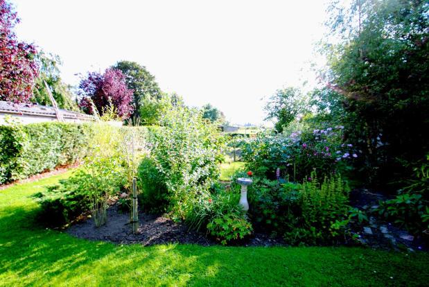 Well-stocked garden