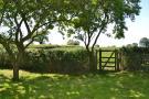 0.25 Acre garden