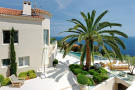 Garden swimming pool palm tree Villa Surram Theoule-sur-Mer Cote d'Azur