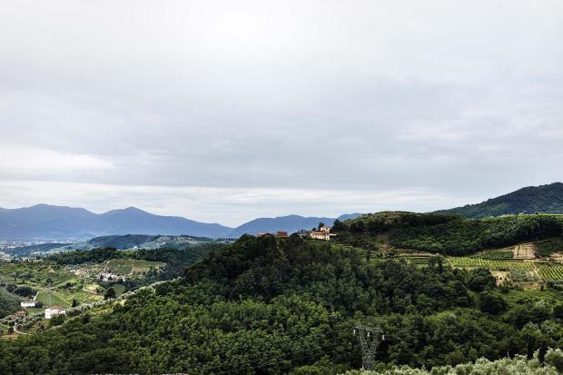 View Villa La Quercia Lucca Tuscany