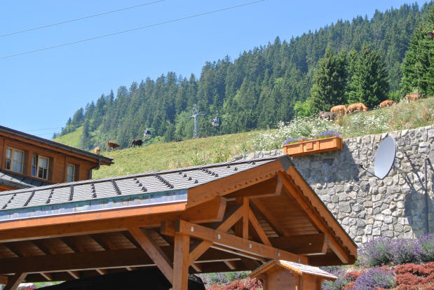 View towards rear mountains and cable cars at Chalet Alina