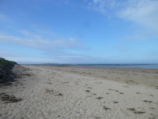 Hauxley Beach Looking towards Coquet Island