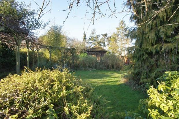 Rear garden *