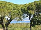 11 bed Gite in St Tropez, France
