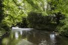 Side River Tye