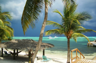 Land in Little Cayman for sale