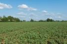 Farm Land for sale in Lot 4b, Warren Farm, OX14