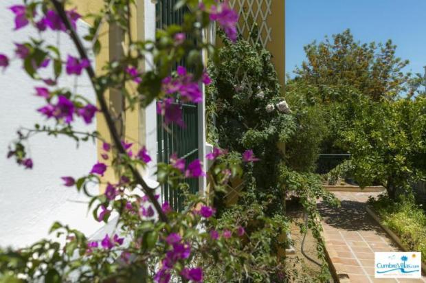Even the entrance terrace has a garden area