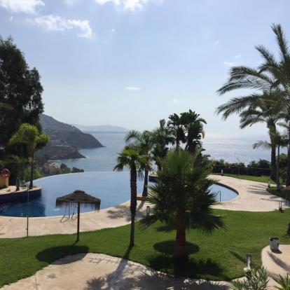 Infinity and communal pool with spectacular views