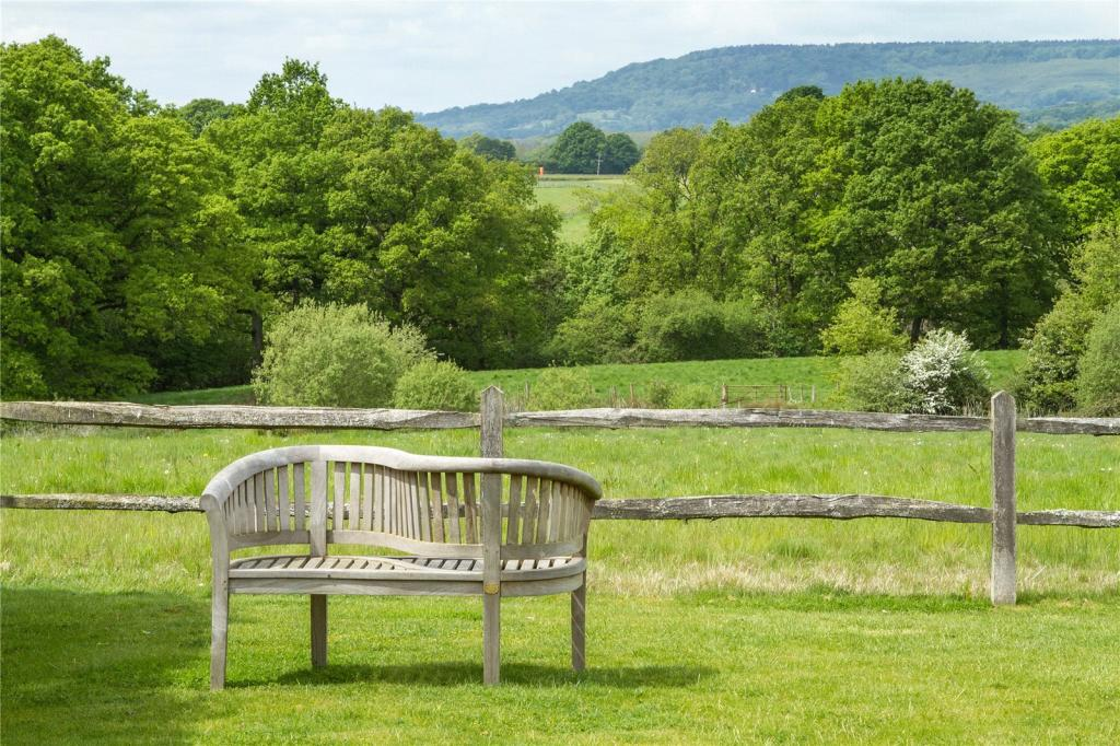 Bench and View