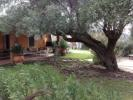 Detached Villa for sale in Sardinia, Sassari...