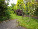 Plot for sale in Swansea Road...