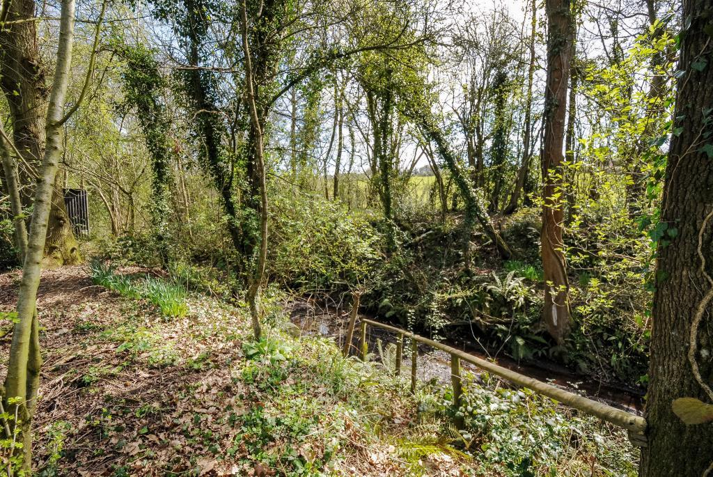 A haven for wildlife along the former railway line
