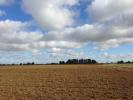Farm Land in Sarah Gate, Quadring for sale