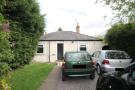 Bungalow to rent in Little Bushey Lane...