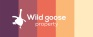 Wild Goose Property Ltd, Burnham-On-Sea logo