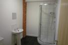 1 of the 2 Shower Rooms