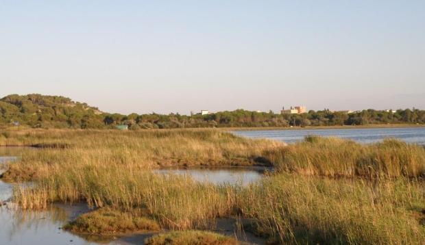Gruissan lagoon