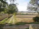 Lauragais landscape