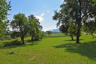 Carinthia Plot for sale