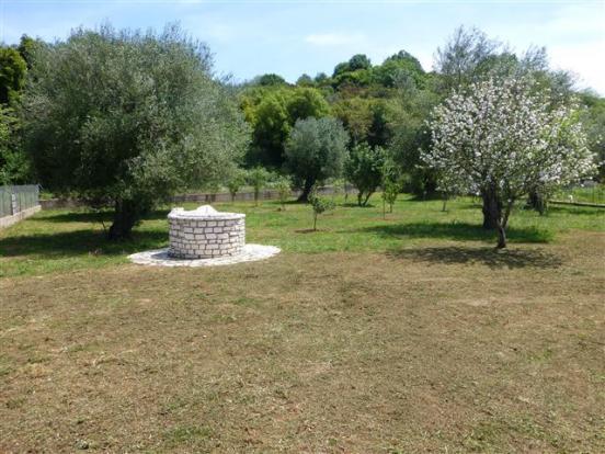 The simply designed garden