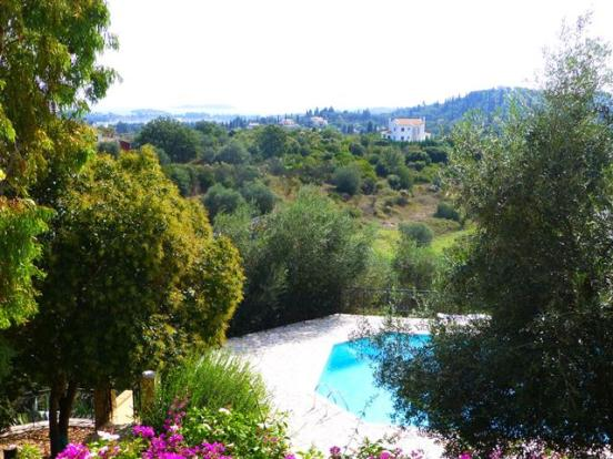 the view over the pool