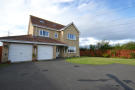 Detached home to rent in Meadow Vale, Shiremoor...