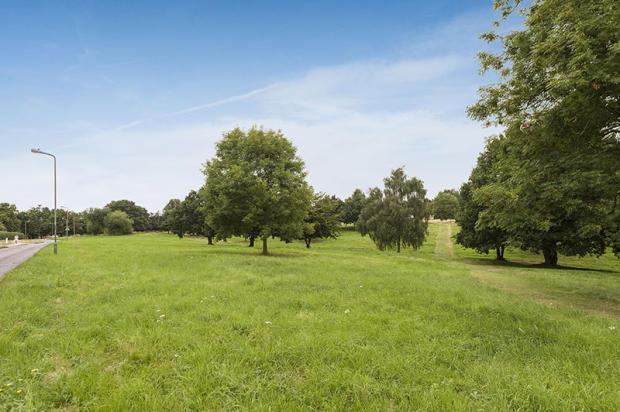 Hadley Common