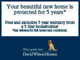 David Wilson Homes, Pineham Lock