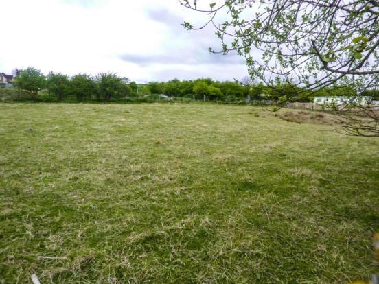 Witton Park Plots (2)