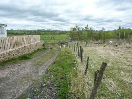 Witton Park Plots (1)