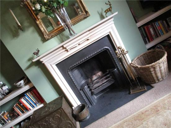 Fire Place and Surro