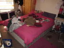 NO STUDENT FEES Addington Road Terraced house to rent