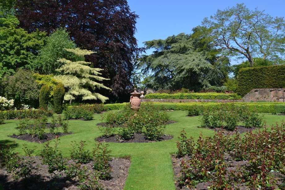 View across gardens