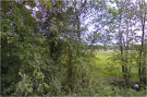 Plot for sale in  Plot B2 Burstow Park...