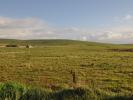 Land at Lyron