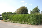 2 bedroom Plot for sale in GROVE ROAD, Selsey, PO20