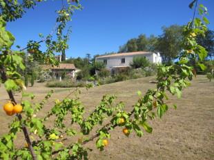 Villa in Bellegarde-du-Razès...