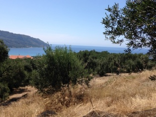 Land for sale in Ionian Islands, Corfu...