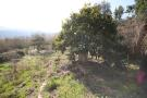 1 bed Country House for sale in Tuscany, Grosseto...