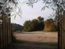Tuscany Farm Land for sale