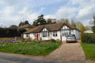 4 bed Detached Bungalow in Woodnewton Road...