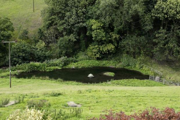 Pond dipping?