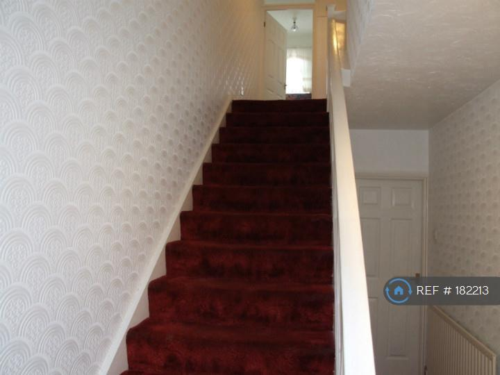 Stairs / Hall