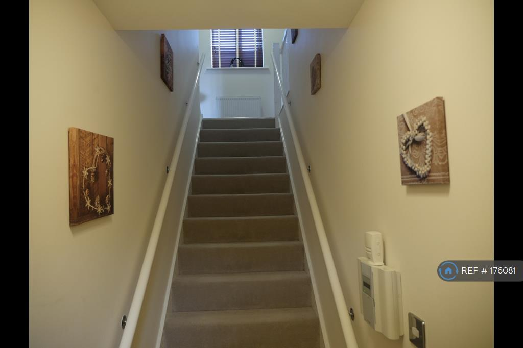 Stairs When You Enter The House