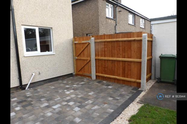 Back Yard And Fencing