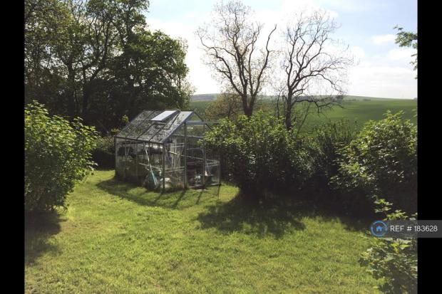 Large Garden With Shed And Greenhouse