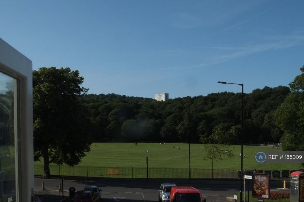 Views Across Park