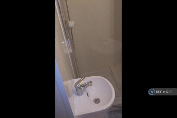 Sink & Shower
